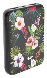 SILICON POWER Power bank C100, 10000mAh, 2x output, 2.1A, μαύρο SP10KMAPBK100CP6JE